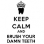 Keep Calm and Brush Your Damn Teeth Hooded Sweatshirt
